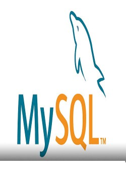 نحوه استفاده از پایگاه داده MySQL در وب