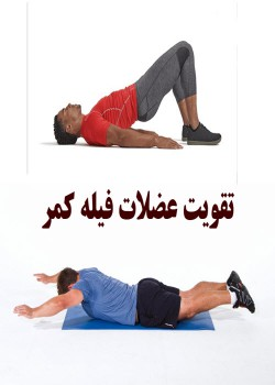 تقویت عضلات فیله کمر