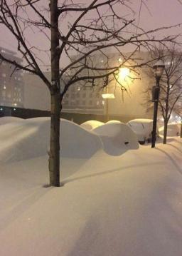 تندنمایی بارش برف!