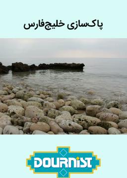 پاک سازی ساحل خلیج فارس