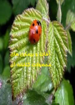 آفات و بیماری های محصولات گلخانه ای
